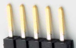 5 pin single row male photo and diagram